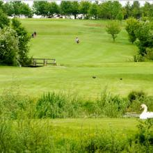 Bourn Golf Club Photo 7