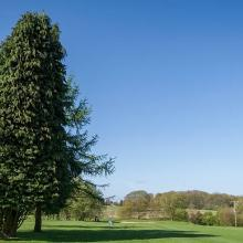 Cherry Lodge Golf Club Photo 1.jpg