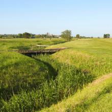 Frinton Golf Club Photo 3