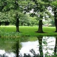 Heaton Moor Picture 1