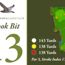 Bracken Ghyll Golf Club Tee 13_2.JPG