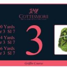 Cottesmore Golf Club GriffinTee 3_0.JPG