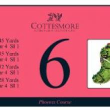 Cottesmore Golf Club Phoenix Tee 6.JPG