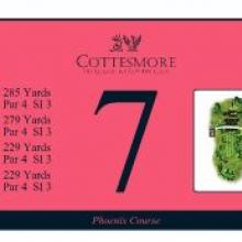 Cottesmore Golf Club Phoenix Tee 7.JPG