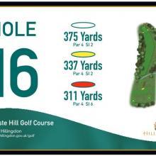 Haste Hill Golf Club Tee 16_1.JPG