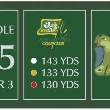 Reigate Hill Golf Club Tee 15.JPG
