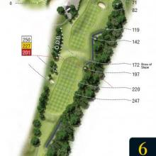 Leatherhead Golf Club Hole 6