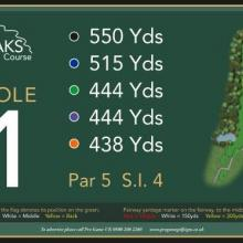 The Oaks Golf Club Hole 1