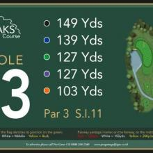 The Oaks Golf Club Hole 13