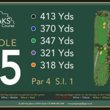 The Oaks Golf Club Hole 15