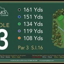 The Oaks Golf Club Hole 3