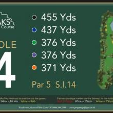 The Oaks Golf Club Hole 4