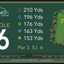 The Oaks Golf Club Hole 6