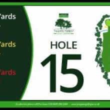 Tilgate Golf Club Hole 15