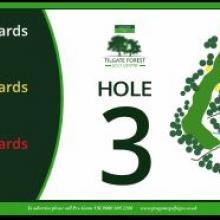 Tilgate Golf Club Hole 3
