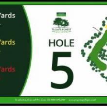 Tilgate Golf Club Hole 5